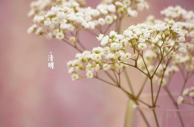 清明节快乐祝福语 适合清明节发的朋友圈说说早安心语