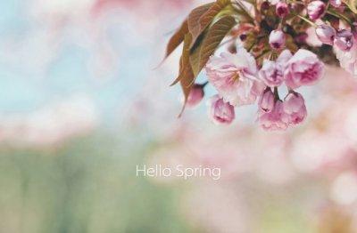 2020春天祝福语 适合春天发朋友圈的句子