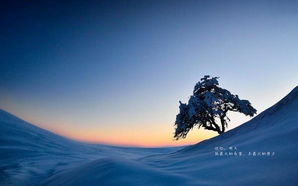 有深度有品味的句子 有内涵有深度的句子