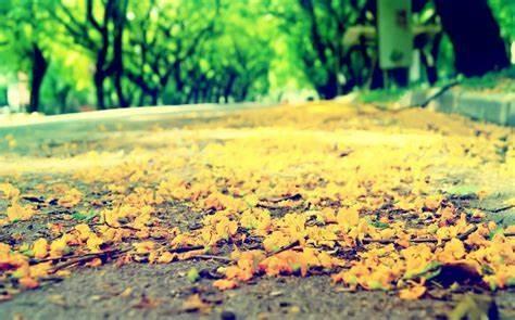丧系但是却充满希望的句子_伤感句子朋友圈语录